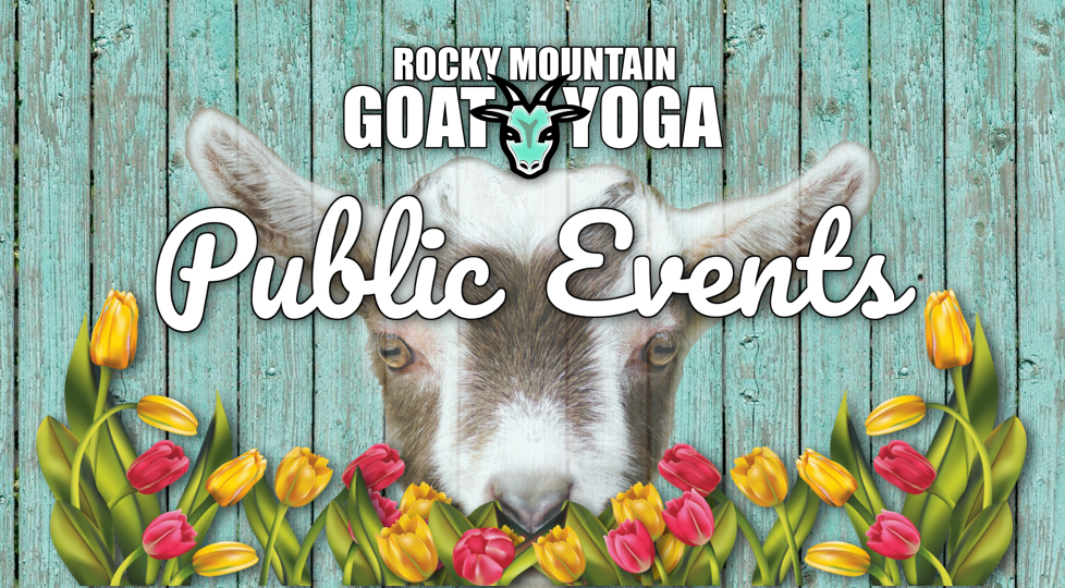Rocky Mountain Goat Yoga - Find Out More About Colorado Goat Yoga